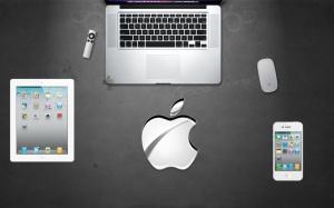 Steve Jobs (1955-2011)